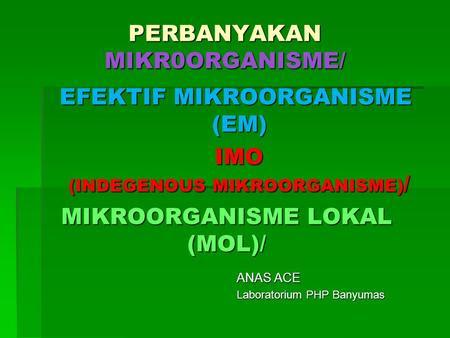 MIKROORGANISME LOKAL (MOL)/ ANAS ACE Laboratorium PHP Banyumas PERBANYAKAN MIKR0ORGANISME/ IMO (INDEGENOUS MIKROORGANISME) / EFEKTIF MIKROORGANISME (EM)
