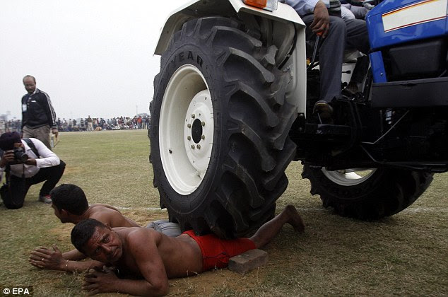 That's got to hurt: A tractor drives over Balbir Singh (right) and Lakha Singh (left) at India's Rural Olympics