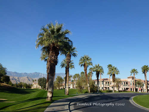 Marriott Desert Springs