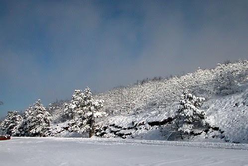 Rich Mountain Winter