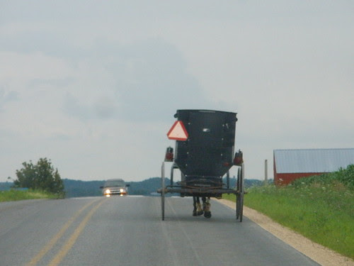 Following a Buggy
