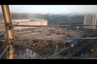 Views in Videos from the MOA Eye