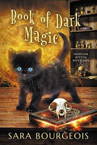 Book of Dark Magic by Sara Bourgeois