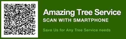 Tree Trimming NJ | Tree Company NJ | Tree Service NJ - Image