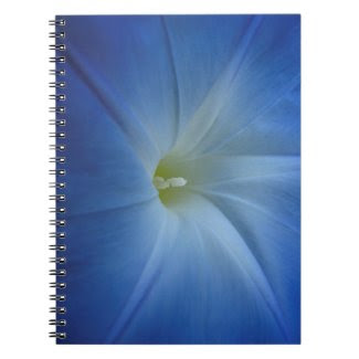 Heavenly Blue Morning Glory Close-Up Spiral Note Books