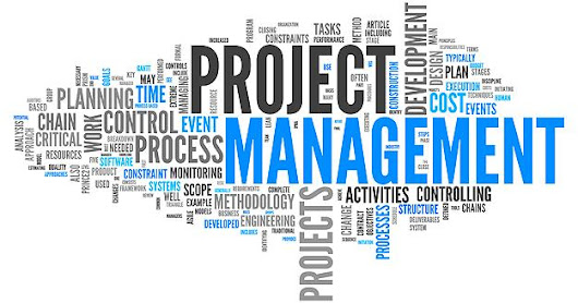 Where did the concept of project management originate?