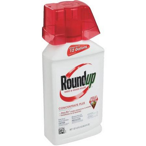 Roundup Weed And Grass Killer Concentrate Plus