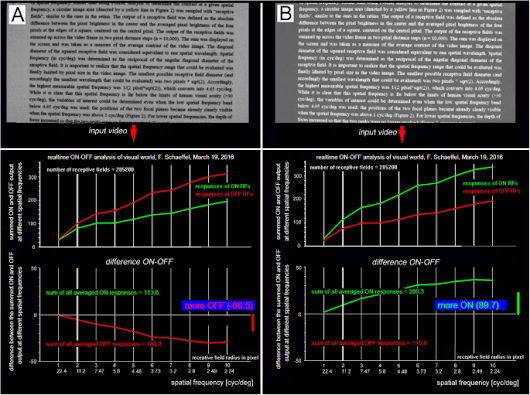Reading and Myopia: Contrast Polarity Matters | Scientific Reports