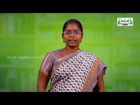 5th Tamil Kalvi TV Bridge Course Work Sheet