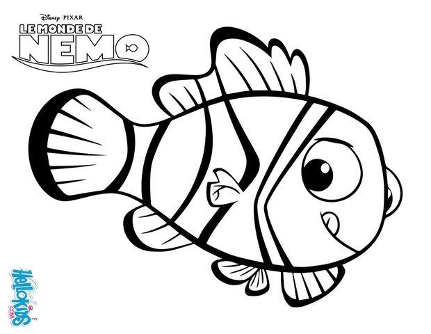 nemo der anemonenfisch_4nq