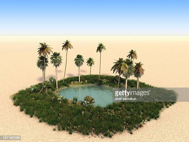 Image result for oasis images