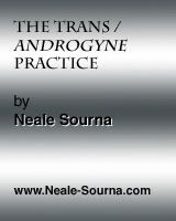 online short story The Trans / Androgyne Practice