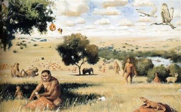 hominins560