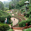 Government Botanical Gardens, Ooty - Wikipedia, the free encyclopedia
