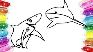 All Clip Of Köpek Balığı çizim Bhclipcom