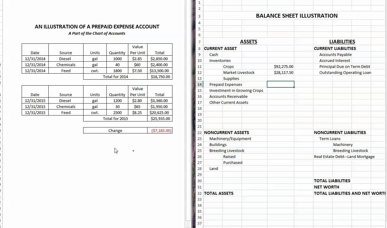 Prepaid insurance is reported on the balance sheet as a ...