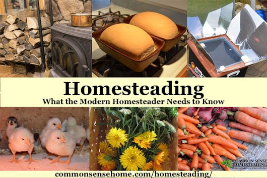 Homesteading - What the Modern Homesteader Needs to Know