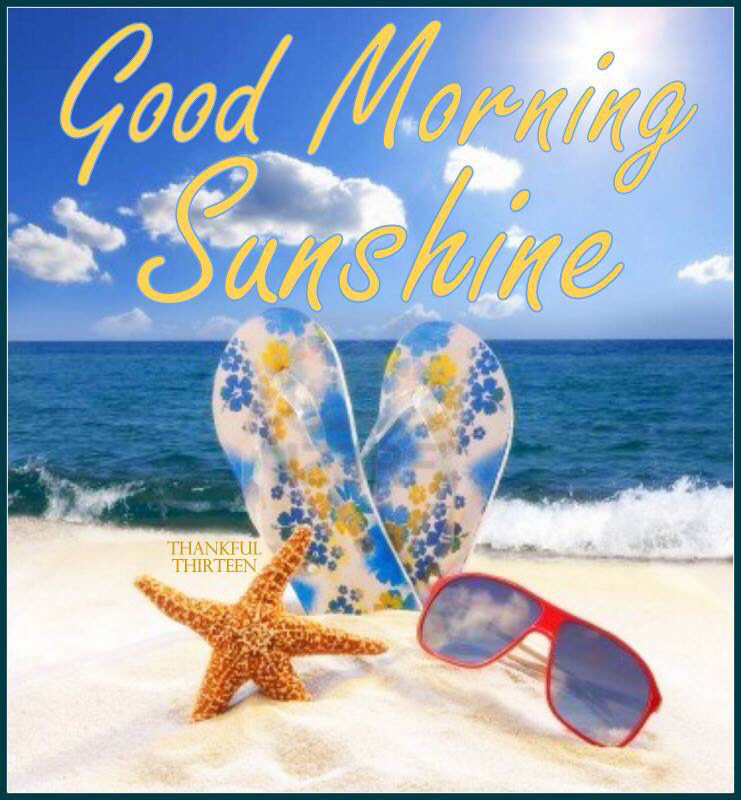 Good Morning Sunshine Summer Quote Pictures Photos And Images For