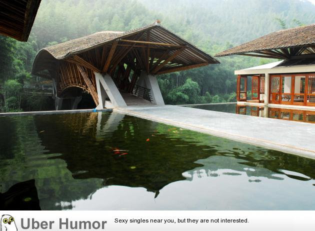 A Bamboo Bridge Funny Pictures Quotes Pics Photos Images
