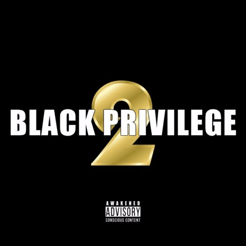 Black Privilege 2 by Napoleon Da Legend