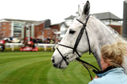 2014 Grand National Grey Runners