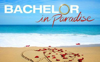 Bachelor in Paradise is the Best Thing on Television this Summer - That's Normal