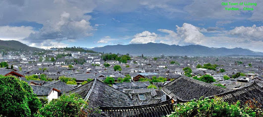 Research of Yunnan Baiyao — We are honest and poor Yunnan Baiyao People