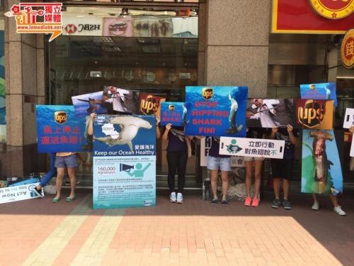 鯊魚保育團體示威促 UPS 禁運魚翅