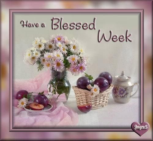 Quotes About Blessed Week 33 Quotes