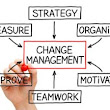 Managing Change - 10 Points Management