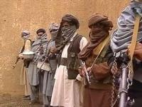 Талибы устроили публичную порку двум похитителям ребенка в афганской провинции Логар