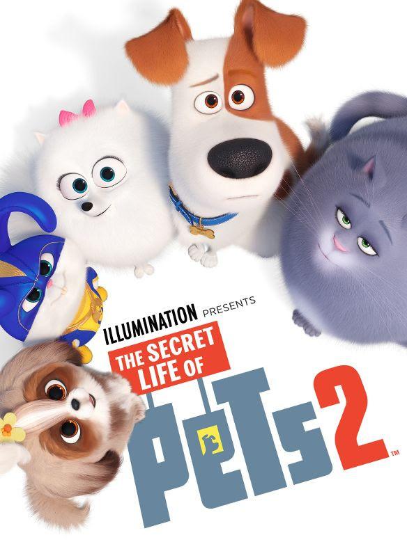 The Secret Life Of Pets Full Movie Sub Indo : secret, movie, Secret, Download, DownloadMeta