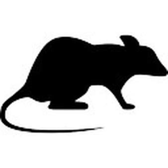 Rat silhouette Icons   Free Download