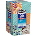 Kirkland Signature 2-Ply Facial Tissue - 12 pack, 90 sheets each