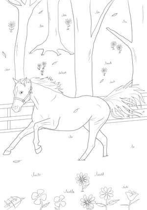 Ausmalbilder Pferde Ostwind Ostwind Ausmalbilder Zum Ausdrucken Kostenlos Pferde 15 Ausmalbilder Mehr Ausmalbilder Pferde Trinidad Dee