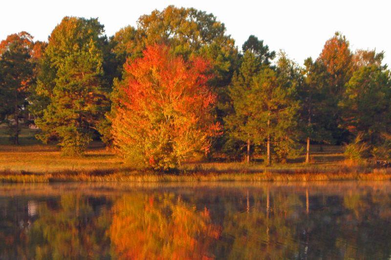Cox Lake Autumn Splendor