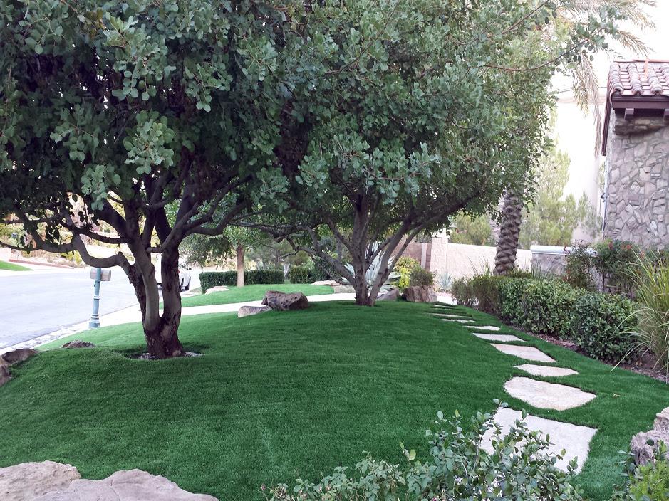 Best Artificial Grass Sebring Florida Lawns Front Yard Landscape Ideas