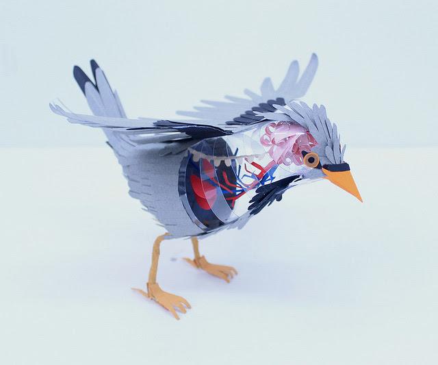 Paper Bird Anatomy sculpture paper birds anatomy