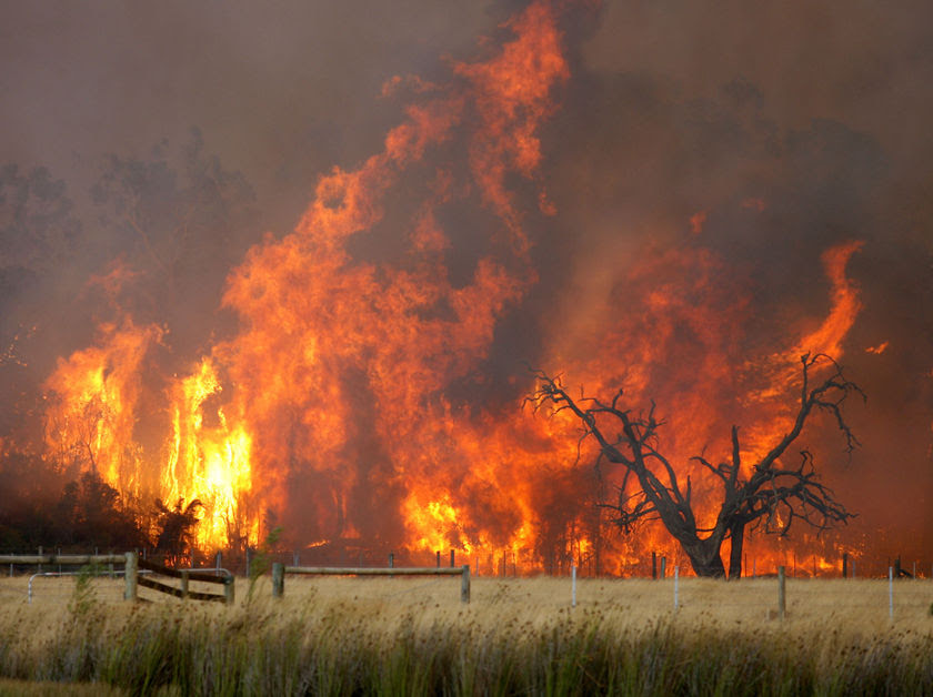 The Bunyip State Park blaze has been fanned by gusty winds. (LINK - AAP: Simon Mossman, file photo)