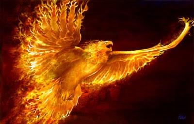 http://renegadetribune.com/wp-content/uploads/2013/09/phoenix-rising-e1379959352809.jpg