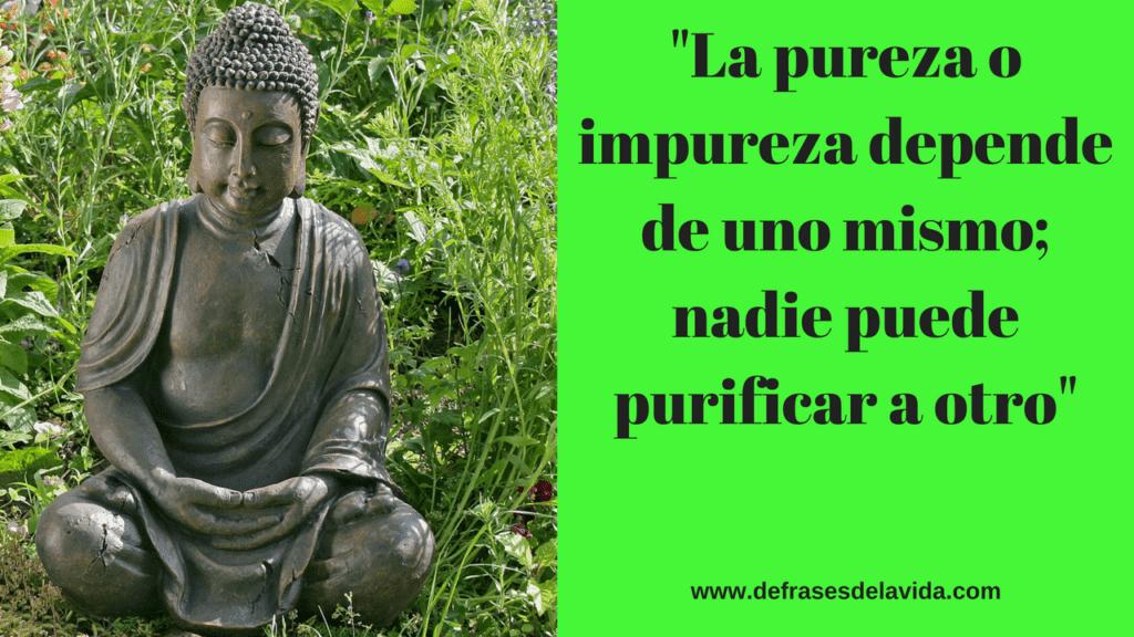 Frases Buda Frases De Budismo Sobre El Misterio De La Vida Y El Amor