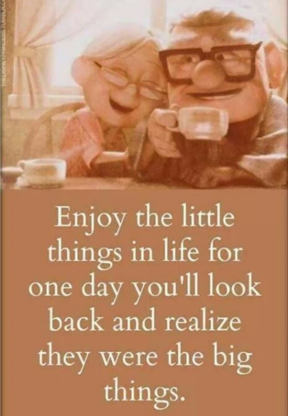 Enjoy The Little Things Moveme Quotes