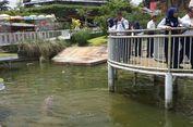 Predator Fun Park Malang Beri Diskon 10 Persen untuk Pemegang Boarding Pass KAI