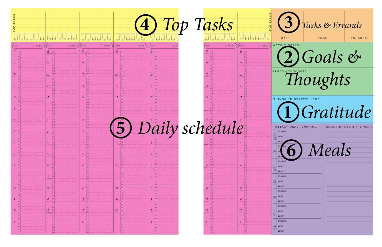 V1 8a to 11p Weekly printable planner insert by ClarityByDesign