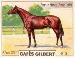 gilbert chevaux010