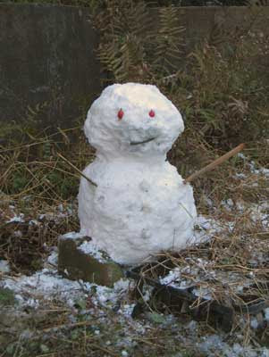 雪のJPG