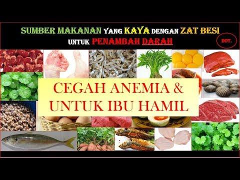 Makanan Untuk Ibu Hamil Yang Kurang Darah 14 Sakit Anemia