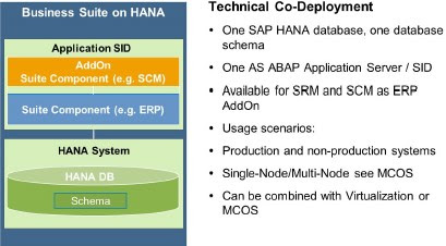 Choosing the right HANA Database Architecture | SAP Blogs