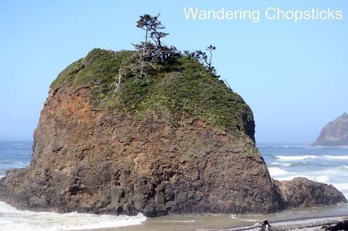 9 Short Beach - Oregon and Home 5