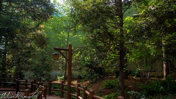 Disneyland Resort, Disney California Adventure, Redwood Creek Challenge Trail